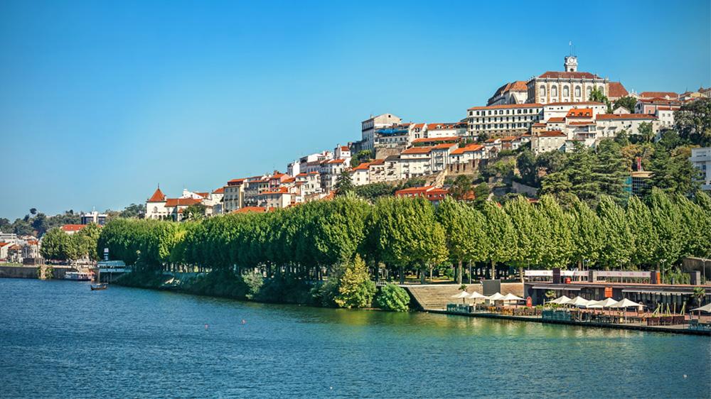 Curso de Programação Neurolinguística - PNL em Coimbra